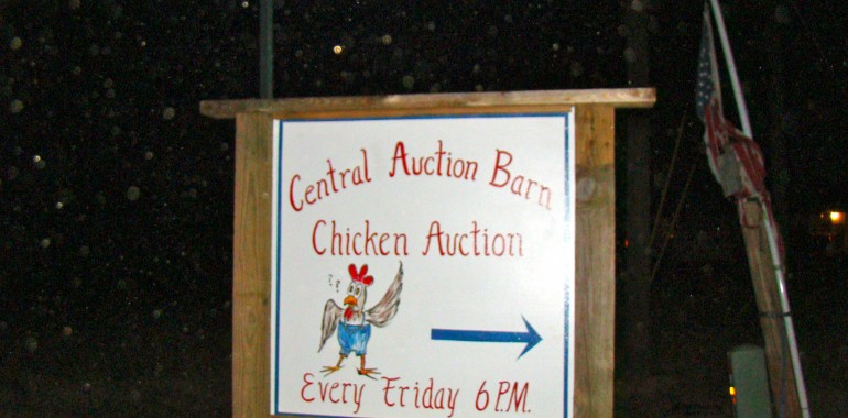 Bet you ain't been to an auction like this before!