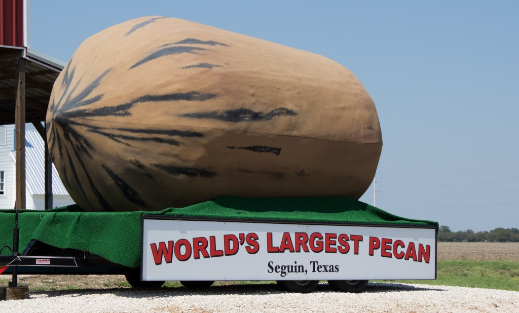 Things That Are Bigger In Texas