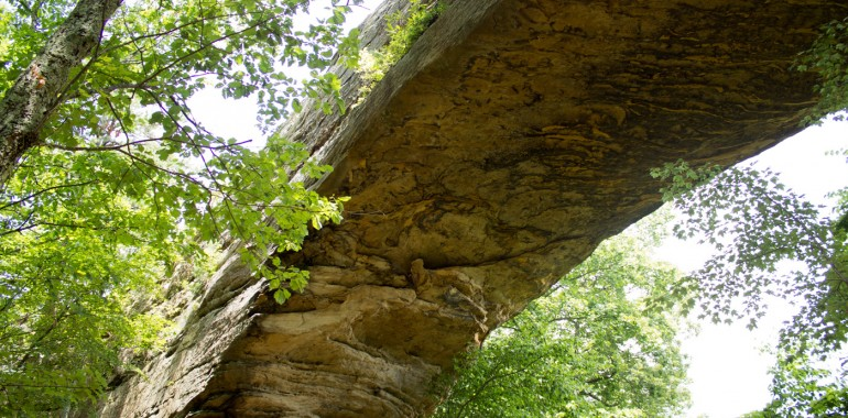 Natural Bridge Resort State Park, Kentucky